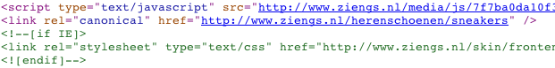 Ziengs canonical tag